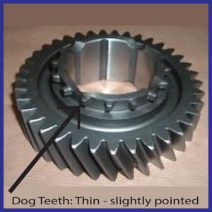 Dog Thin